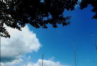 徳島の自然